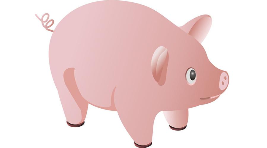 《多还是空》第一章:每个进入现货行业的人都是折翼的天猪